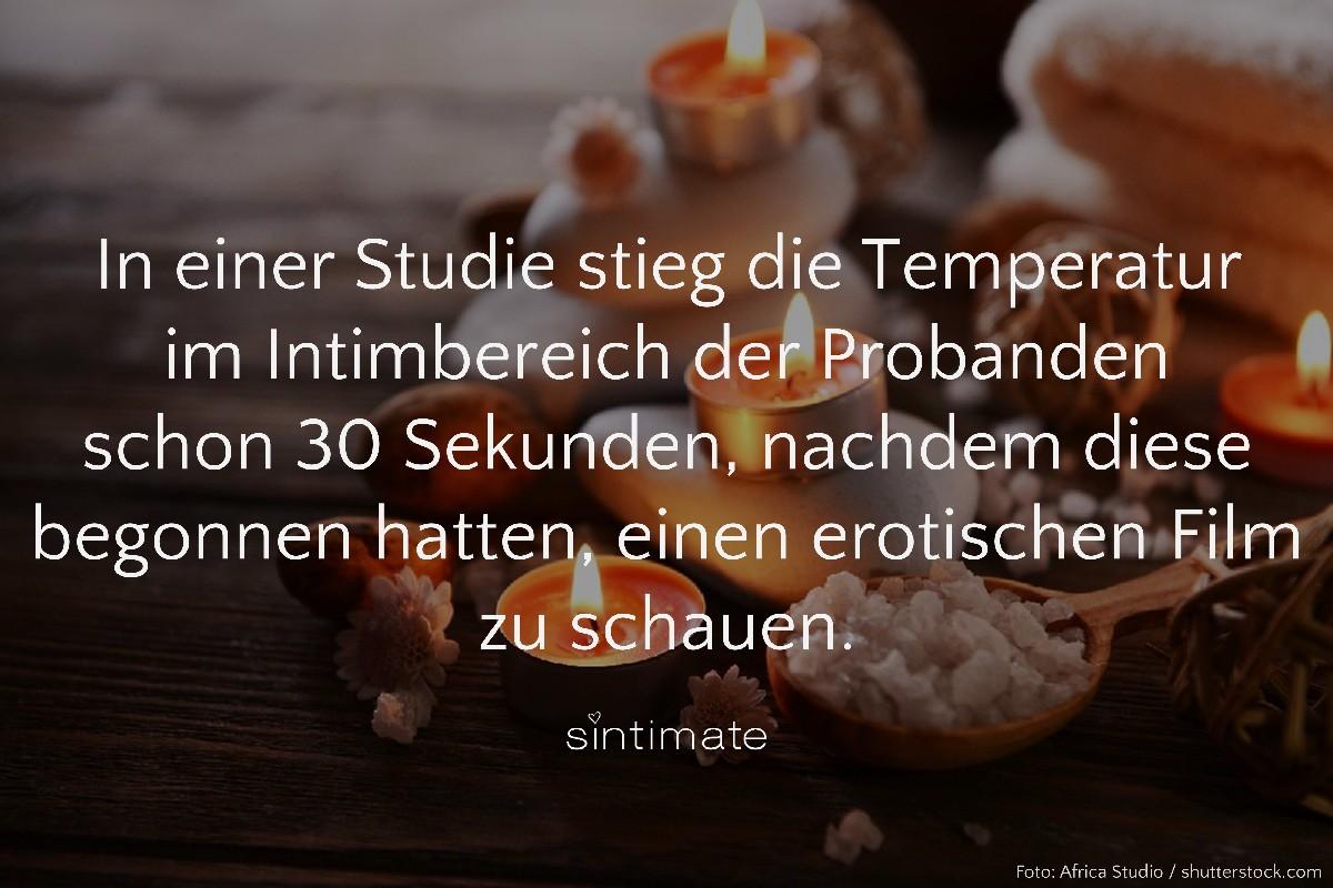 20180824_FunFact86_shutterstock_Africa-Studio